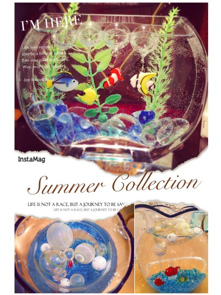 Summer——–!!! /pyOn吉